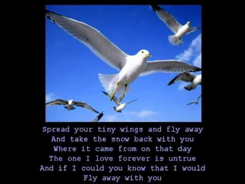 Anne Murray - Snowbird (with lyrics)